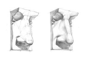 phân tích mũi